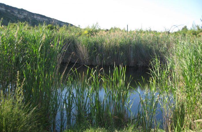Mavrobara Lake (Turtle lake)