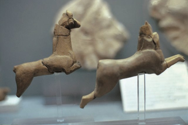 Exhibits of clay animals found in Halkidiki