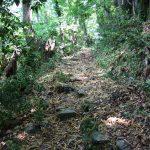 Ancient toute at Mountain Athos