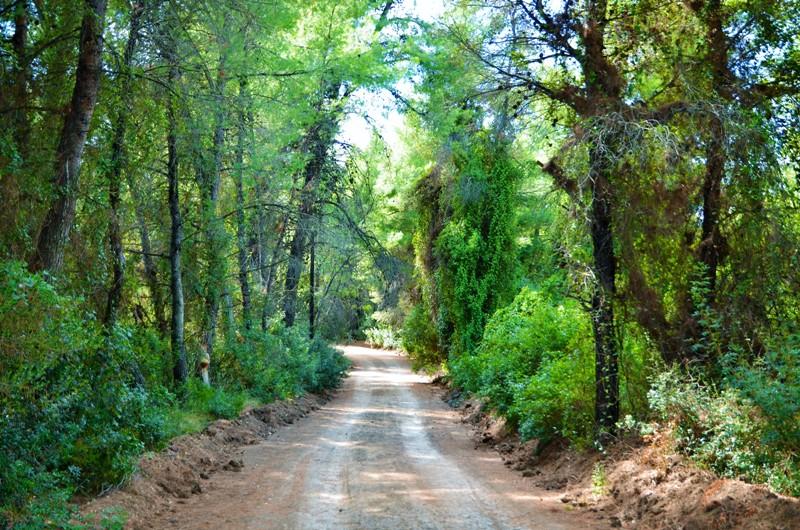 View of the walking route of Mavrobara Lake