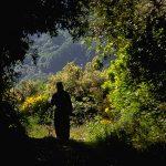 Walking routes at Mount Athos