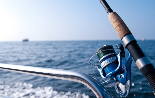 Fishing tour at Nea Fokea