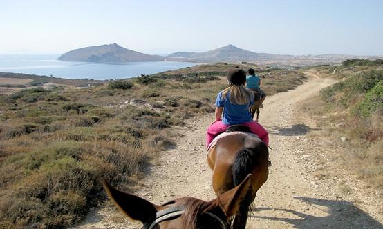 Mule riding tour