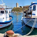 Fishing boats at the harbor of Nea Fokea