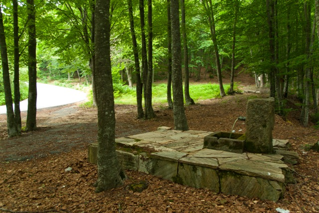 Picnic area at Taxiarchis