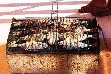Fish BBQ on board